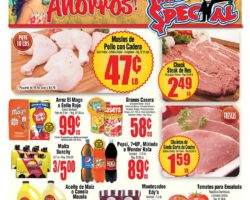Shopper Mr Special 2 de Julio al 15 de Julio de 2020